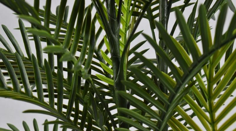 仿真植物厂家仿真植物的四大优点