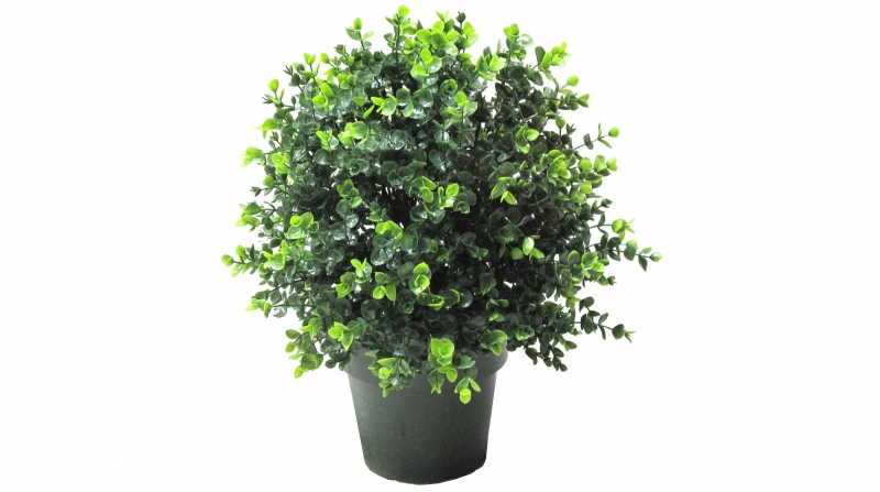 仿真植物厂家使用仿真植物小盆栽的注意事项