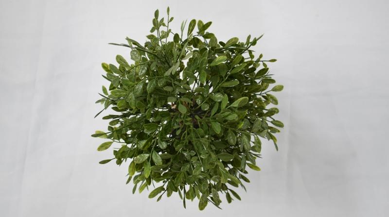 仿真植物厂家摆放仿真植物小盆栽的小技巧