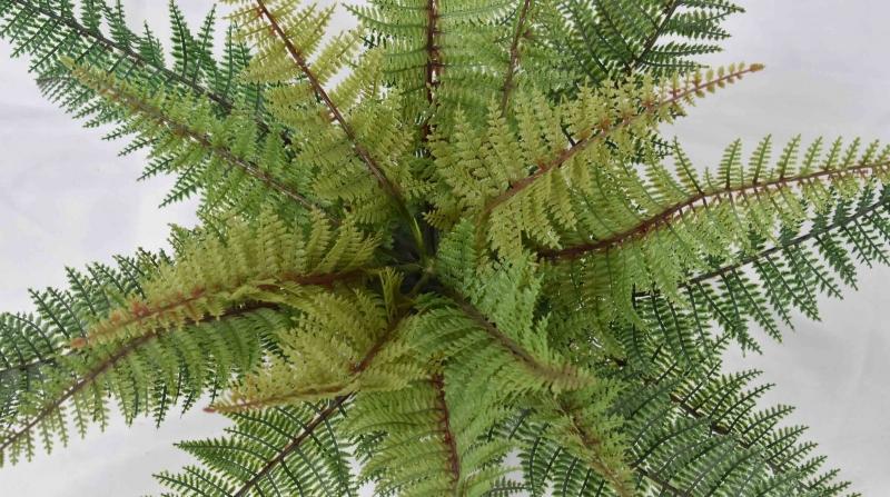 仿真植物盆景社会的可绿化的面积越来越小如何面对绿化问题呢?