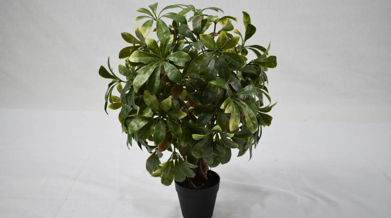仿真植物墙原来仿真树除了可以美观装饰还可以用作避雷针