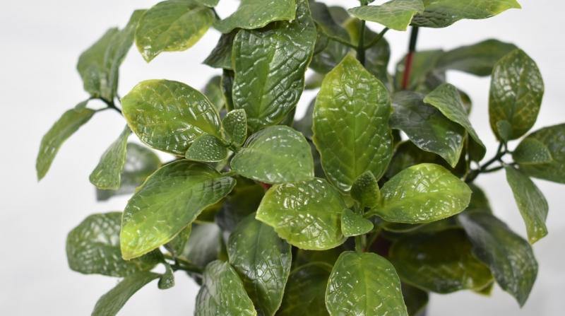 仿真植物盆景仿真植物树未来绿色环保潮流