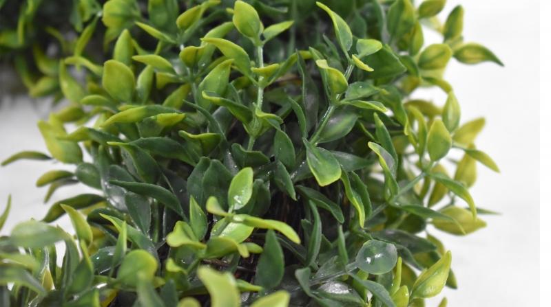 仿真植物厂家室内软装仿真植物墙的自然原生态