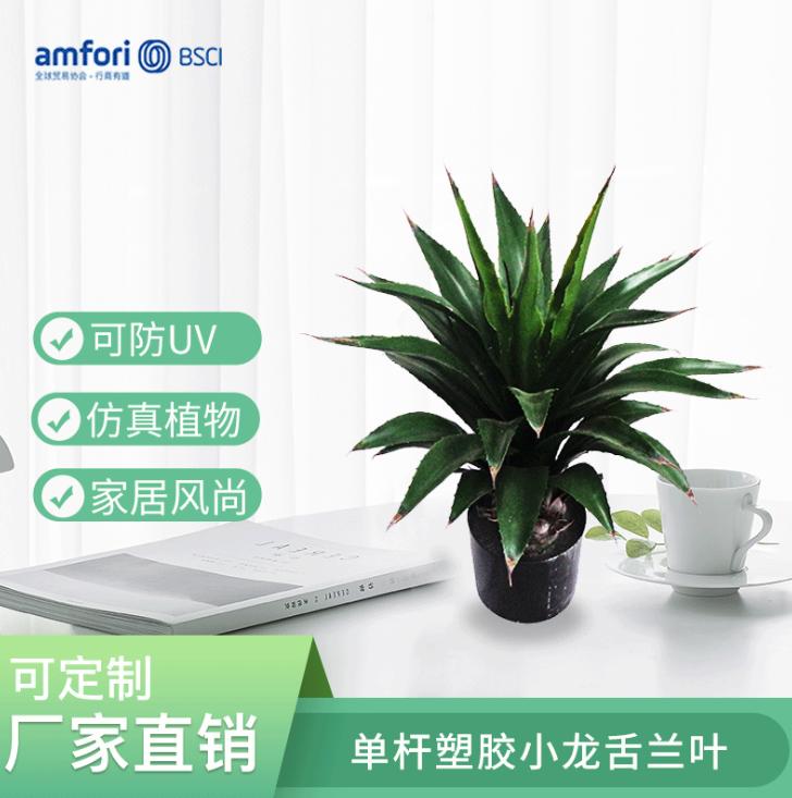26寸小龙舌兰叶仿真植物盆栽