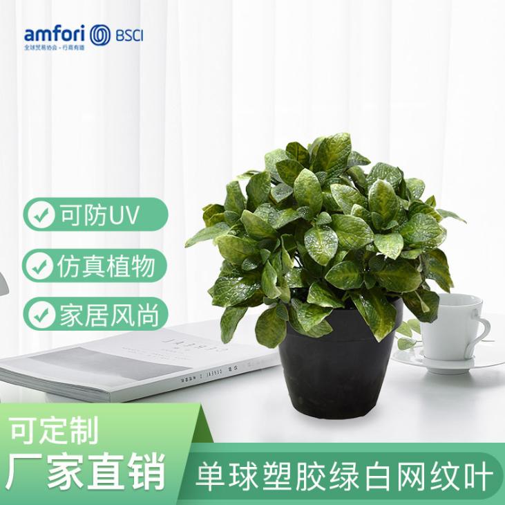 9寸仿真植物盆栽单球塑胶绿白网纹叶绿植