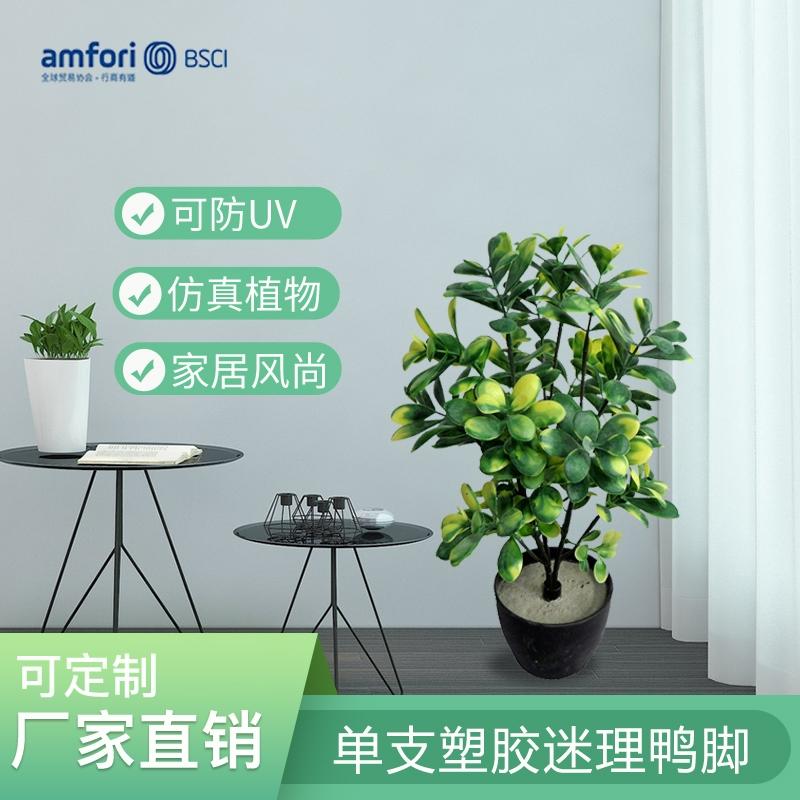 15.75寸单枝塑胶迷理鸭脚植物盆栽仿真绿植