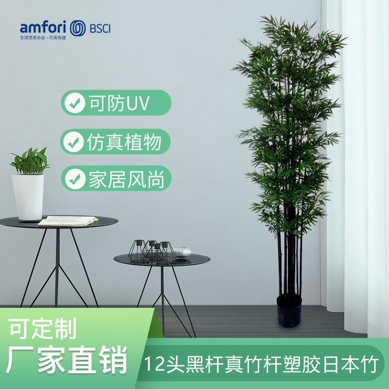 7尺12头黑杆真竹杆塑胶日本竹