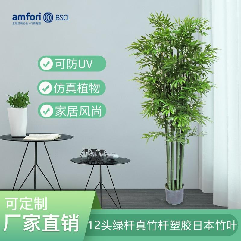 5尺12头绿杆真竹杆塑胶日本竹叶
