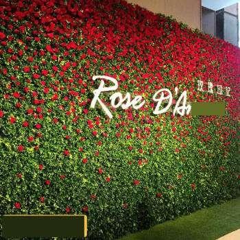 仿真植物墙让生活色彩丰富