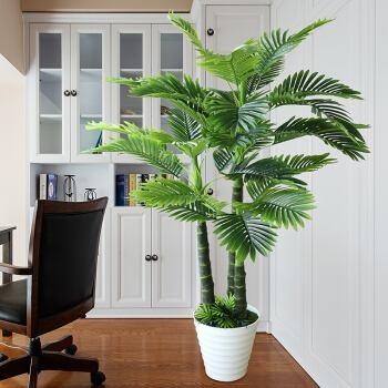 园林景观效果图,仿真植物室内造景